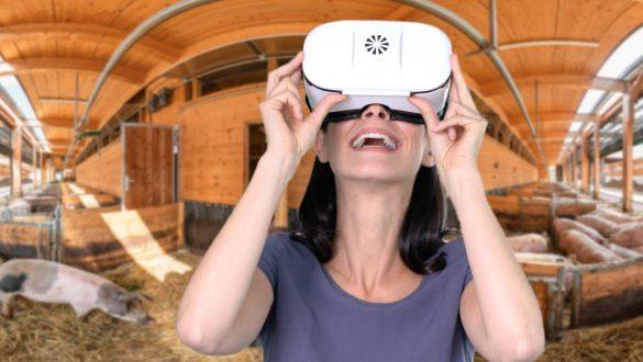 virtueller Bauernhof - in 360 Grad mit der VR-Brille erleben