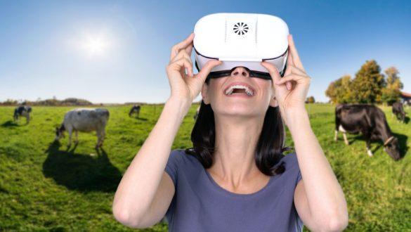 virtuelle 360 Grad Bauernhof Tour mit jeder VR-Brille erleben