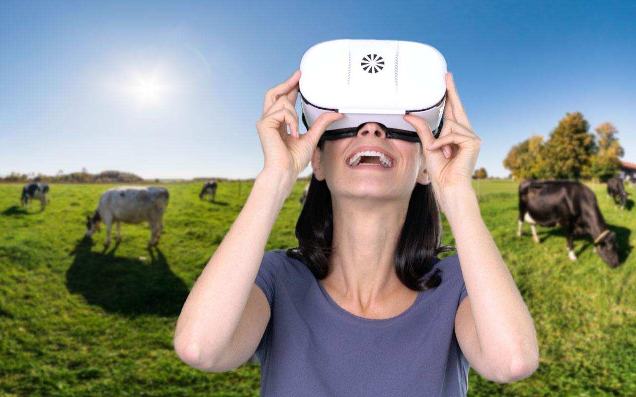 virtuelles 360 Grad Video mit jeder VR-Brille erleben
