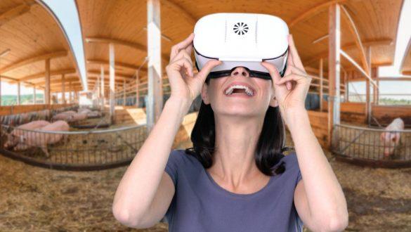 virtueller Bauernhof - im 360 Grad Video mit der VR-Brille erleben