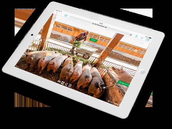 virtueller Bauernhof mit Schweinen -einfach in 360 Grad erleben