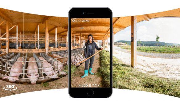 virtueller Bauernhof mit Öko Schweinen - in 360 Grad erleben